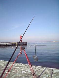 釣り日和〜〜