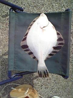 北海道釧路の釣りは〜