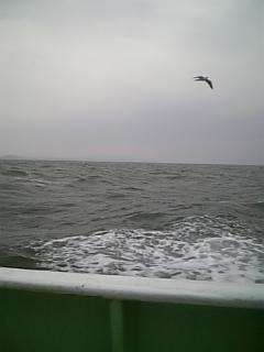 アリャ?風&波&雨〜